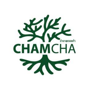 chamcha